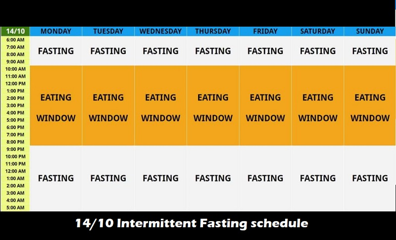 Role of Intermittent Fasting on your Testosterone levels ...