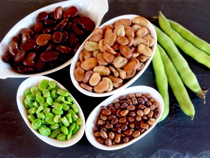 beans boost metabolism