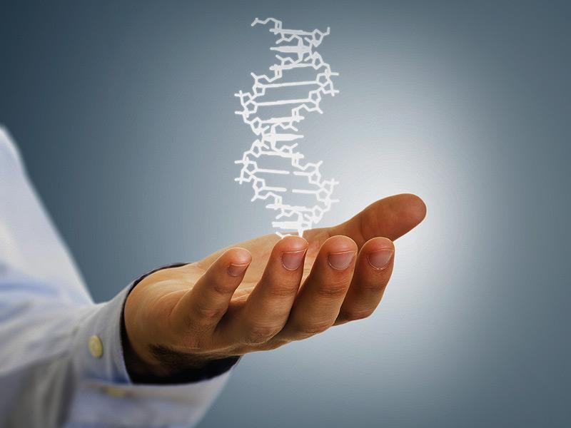 genetics affects metabolism